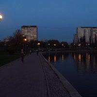 Вечер на городском пруду :: Андрей Лукьянов