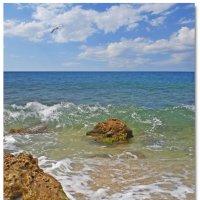 Морские камешки:) :: Эля Юрасова