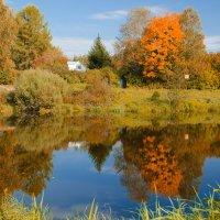Осенний пруд :: Максим Рублев