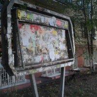 Досадный интерьер доски объявлений... :: Ольга Кривых