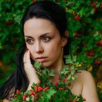 Райские яблочки :: Юлия Микшина