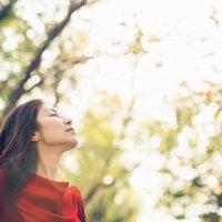 Моя Осень. Вслед за солнцем. :: Arman