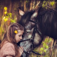 Огромная любовь к лошадям :: Анна Коняхина