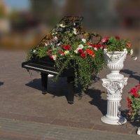 рояль в ... городе :: mig-2111 Новик