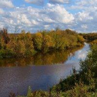 Краски сентября :: Вера Андреева