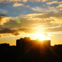 Закат над Петербургом :: Дарья :)
