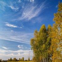 Осеннее небо :: Андрей Дворников