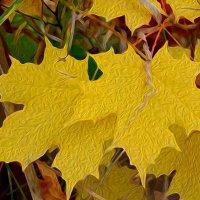 краски осени... :: Натали Акшинцева