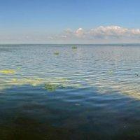 Плещеево озеро :: Сергей Сёмин