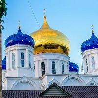 Собор в городе (Одесса) :: Алексей Логинов