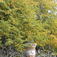 Осень в Михайловском саду :: Маера Урусова
