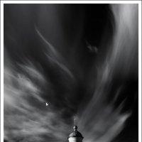 Крылья ангела :: Влад Соколовский
