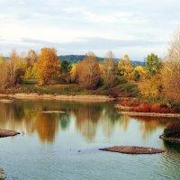 Такая разноцветная осень... :: Александр Попов