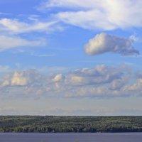 Взгляд с высоты :: Лидия (naum.lidiya)