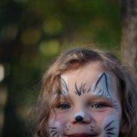 Очарование осени, или не все кошки сами по себе... :: Митя Шишкин