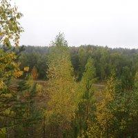 Осень на Псковщине :: BoxerMak Mak