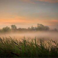 Раннее утро :: Дмитрий Motorin