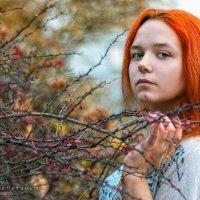 Колючки :: Наталья Верхотурова