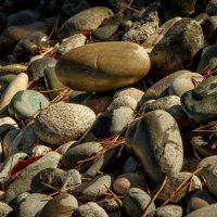 Время собирать камни :: Владимир Gorbunov