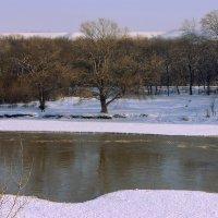 Белые берега, мутная вода :: Игорь Сикорский