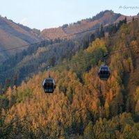 Осень. Сказочный чертог,  всем открытый для обзора. :: Anna Gornostayeva