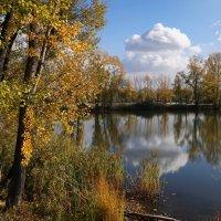Осень и облака :: Наталия Григорьева