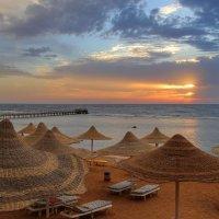 Моя Египетская осень :: галина северинова