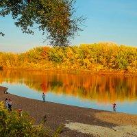 Осень, как всегда, прекрасна!!! :: Elena Izotova