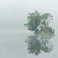 Занавесил вуалью туман островок... :: Валентина Данилова