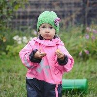 Неужели помидор закончился? :: Annie Makovskaya