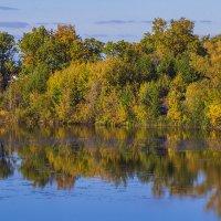 Берег озера :: Николай Полыгалин