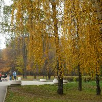 Осенний этюд.2 :: Александр Атаулин