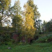 Золотая осень отлично гармонирует с  гранитной крепостью :: Елена Павлова (Смолова)