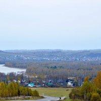осень в Сибири :: Ольга Логачева