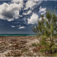 """""""Плайя Хирон""""...Период отлива на Карибском побережье Кубы! :: Александр Вивчарик"""