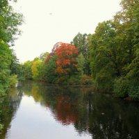 Осень в парке. :: Валентина Жукова