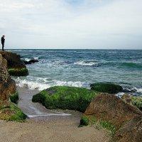 мысли уносит вода словно они из песка, ты приходи иногда к морю свободы искать... :: Людмила