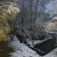 Осенний снег-5. :: Наталья Юрова