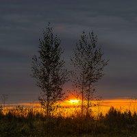 Утро последнего дня сентября :: Владимир Максимов