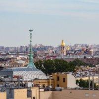На крышах Санкт-Петербурга (5) :: Николай Николенко