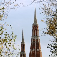 Старо-Голутвинский монастырь :: Анатолий Петров