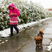 В первый снег... :: Алексей Белик