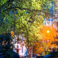 Осени краски :: Микто (Mikto) Михаил Носков