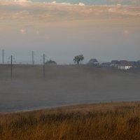 Туман :: Евгения Каравашкина
