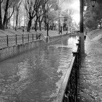 Райский сад :: Роман Годовалов