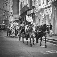 Венское такси :: galidob