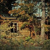 Осень, как время жизни :: Сергей В. Комаров