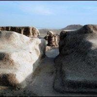 Развалины древней Ниссы :: Ахмед Овезмухаммедов
