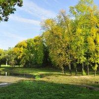 Осень тронула кистью деревья, приутих говорливый ручей... :: Алеся Пушнякова