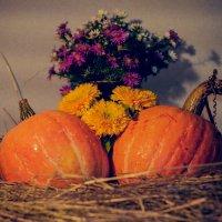 Осень уже наступила :: Котэ(Данил) Чеширское